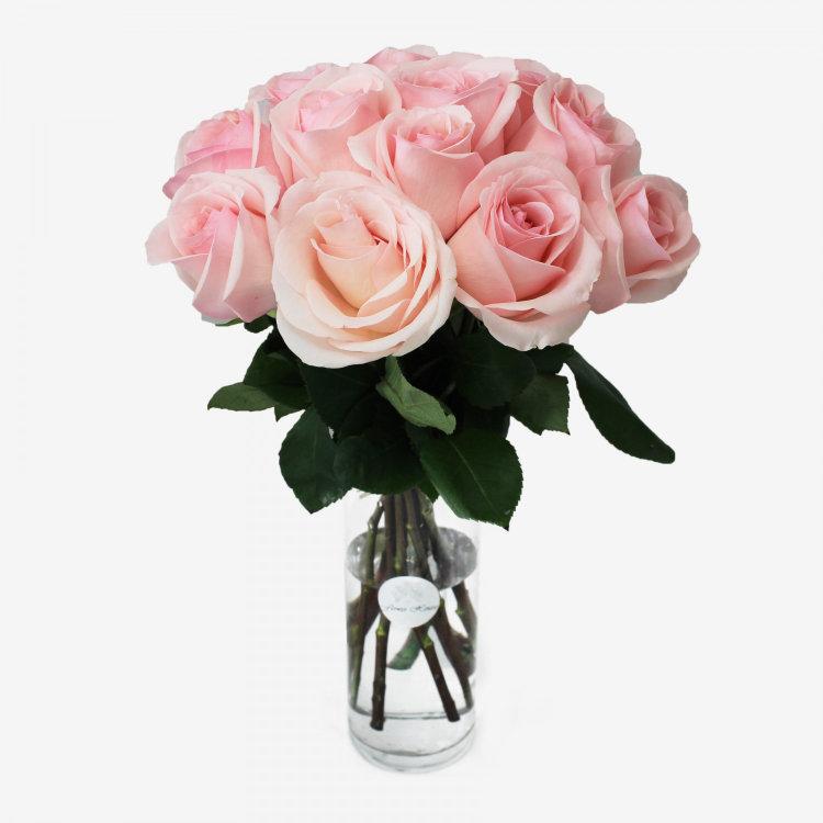 12 Novia Light Pink Roses Bouquet