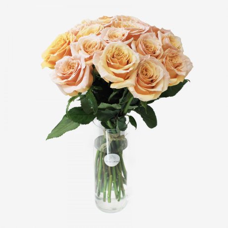 18 Peach Shimmer Rose Bouquet