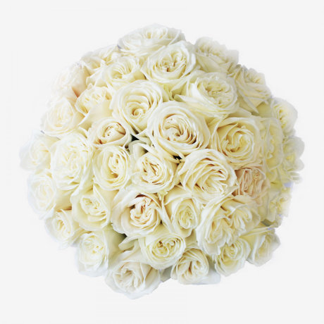 36 White Playa Blanca Rose Bouquet
