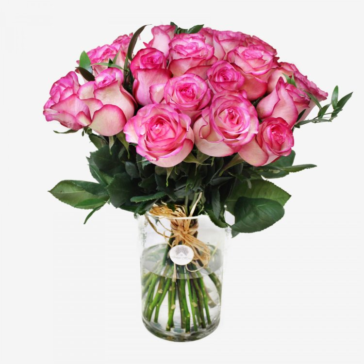 36 Light Pink Roses Bouquet