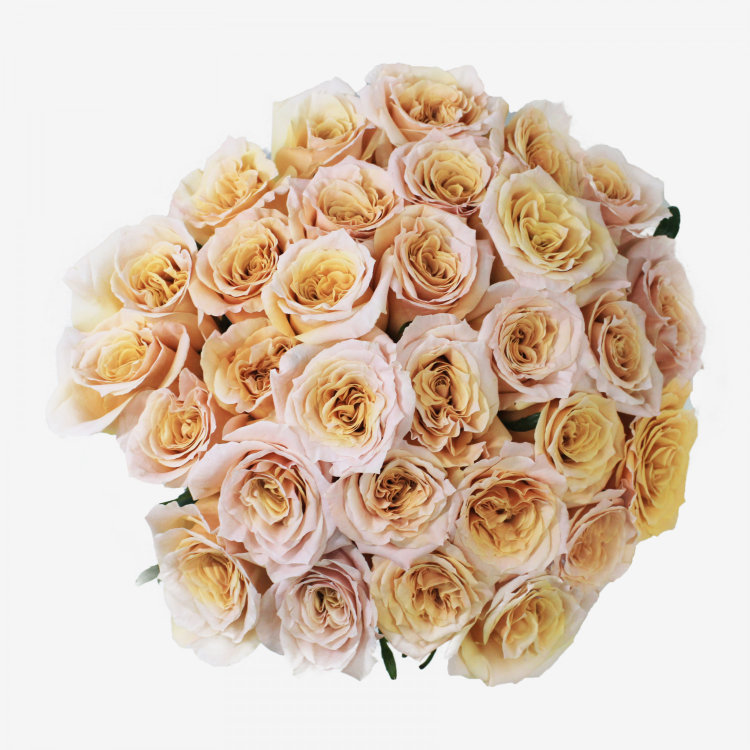 30 Peach Shimmer Rose Bouquet