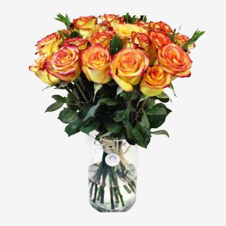 25 Orange Roses Bouquet