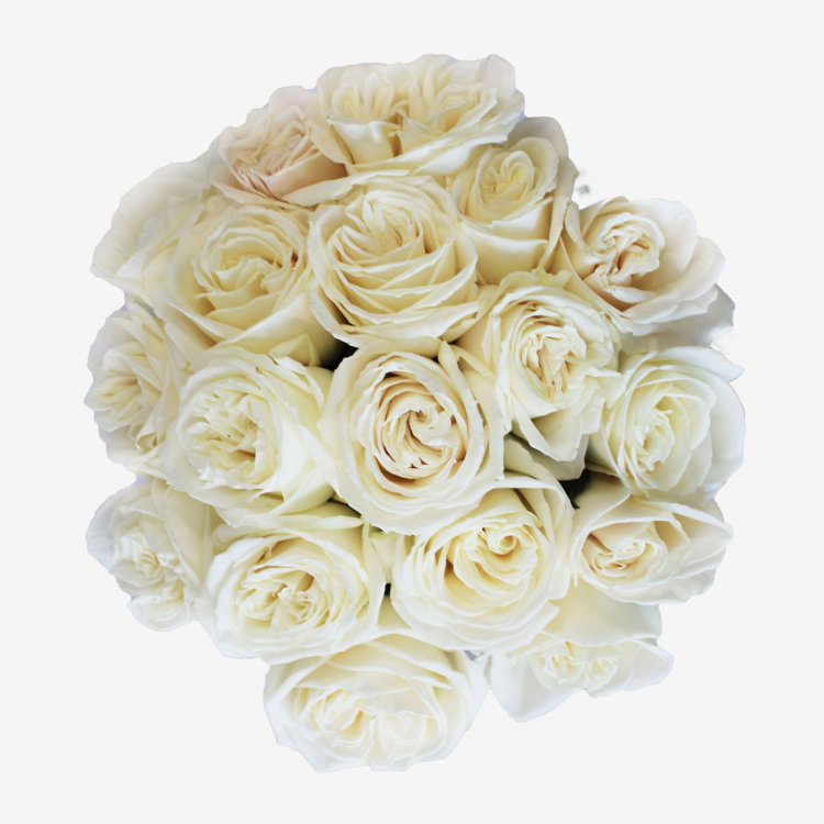 18 White Playa Blanca Rose Bouquet