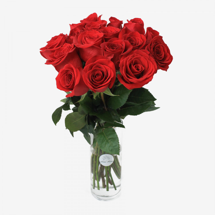 18 Red Freedom Roses Bouquet